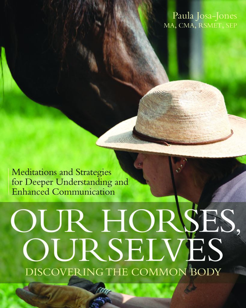 OurHorsesOurselves